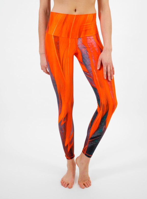 Arctic Flamingo Yoga Leggings