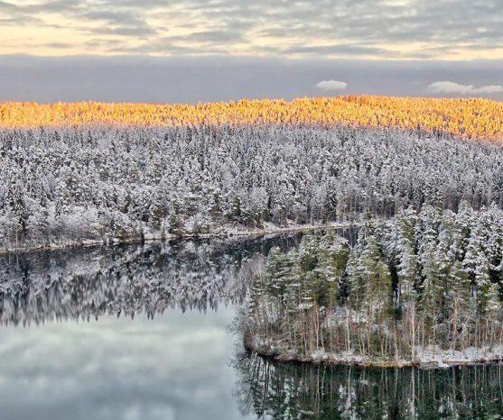 Finnland Quelle von Inspiration Design