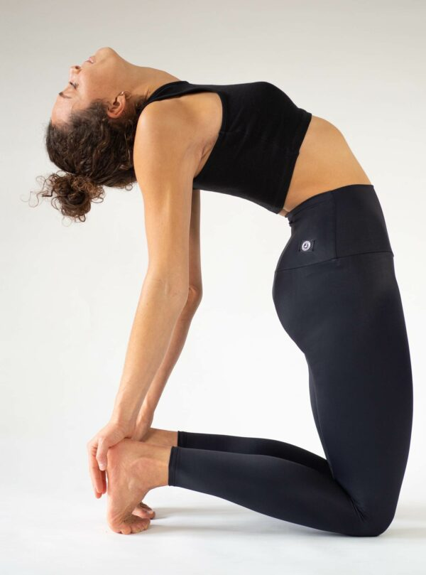Black-Yoga-Leggings-High-Waist-Opaque-Arctic-Flamingo