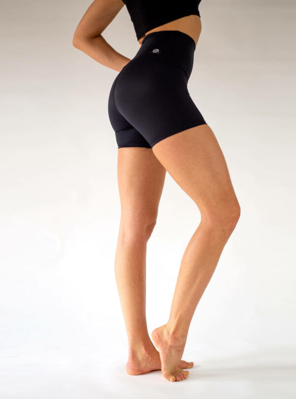 Yoga-Shorts-Hight-Waist-Arctic-Flamingo