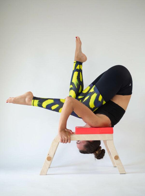Yoga Leggings Equipment Made in Germany Arctic Flamingo Siya